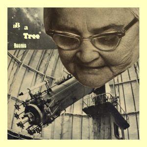 bozmo b a tree single 2013