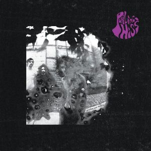 purling hiss water on mars lp 2013 drag city