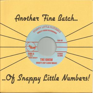 the knew what's hip 7 snappy little numbers 2013