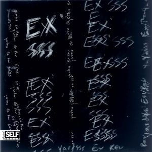Yardsss Ex Rev ex'sss split 7 self group 2014