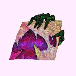 wand ganglion reef lp god drag city 2014